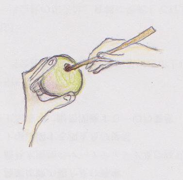 梅の実をきづ漬けないように、皮が破れるとつぶれ梅になります