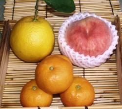 バレンシアオレンジとハウスみかん、紀の里の桃をセットにしました