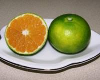 外皮と違って中味はすっかりオレンジ色です。