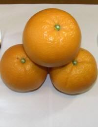 晩柑類の美味しい季節です。夏にはバレンシァオレンジがオススメです